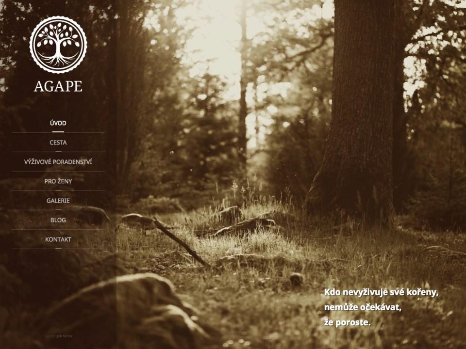 Náhled projektu AGAPE poradna  - Úvodní strana