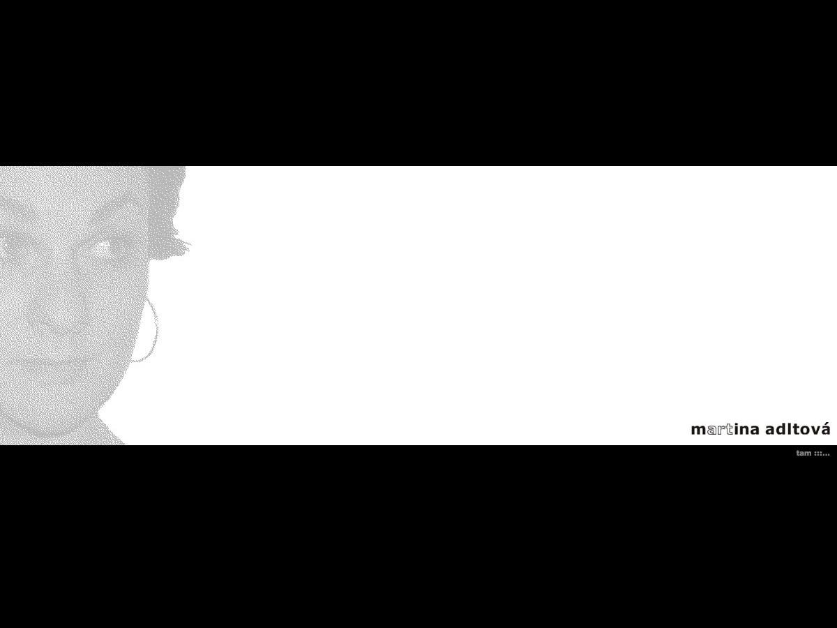 Náhled projektu Malířka Martina Adltová  - Úvodní stránka